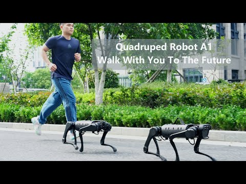quadruped-robot-a1-walk-with-you-to-the-future