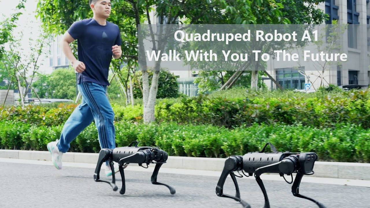 Quadruped Robot A1 walk with you to the Future