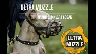 Уникальный намордник для собак Ultra Muzzle