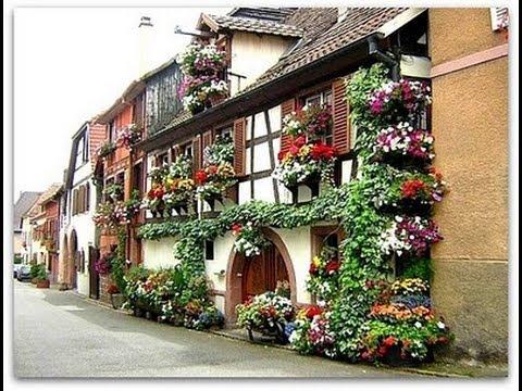 bricolage Giardinaggio come Scegliere e Posizionare Le Piante Da ...