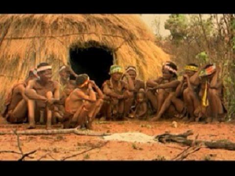 Видео секс в джунглях что