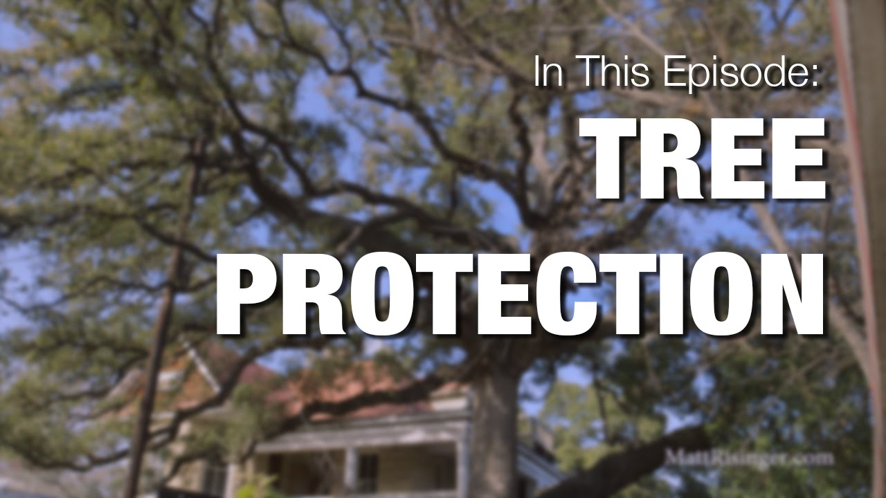 Protecting trees from nearby construction youtube for Don gardner arborist