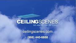 Ceiling Scenes Acoustic Tiles
