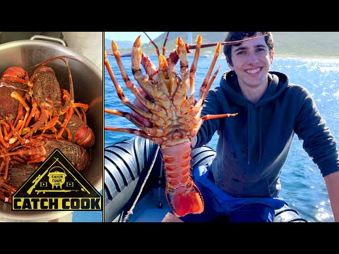Catching Crayfish With A Ring Net (west Coast Rock Lobster) Catch Cook