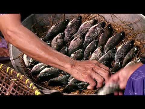ORANG PINGGIRAN | MENAFKAHI DENGAN MATA HATI (05/09/18) 1-3