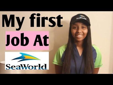 My First Job At Sea World