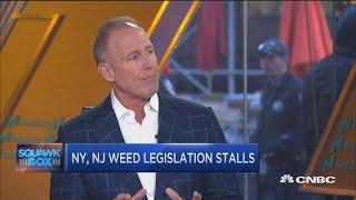 Recreational marijuana use will eventually be legalized: Cannabis company CEO