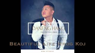 Hmong Songs 2018 NEW! Album 2 - Daneng Hang