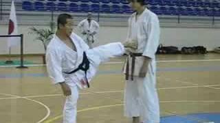 Kagawa-sensei demonstrating maegeri and Yokogeri Kekomi thumbnail