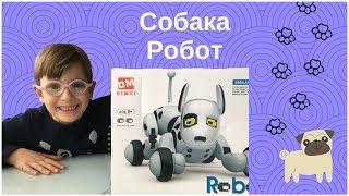 Интерактивная Игрушка Собака Робот / Interactive Robot Dog