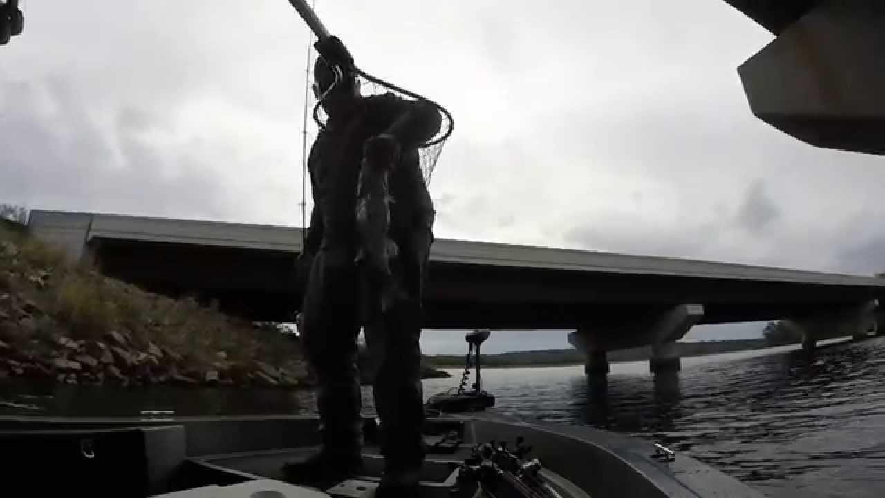 Lake dardanelle day 1 practice youtube for Lake dardanelle fishing report