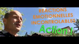 Réactions émotionnelles incontrôlables : Action !