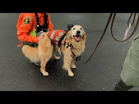 Training For A Search And Rescue