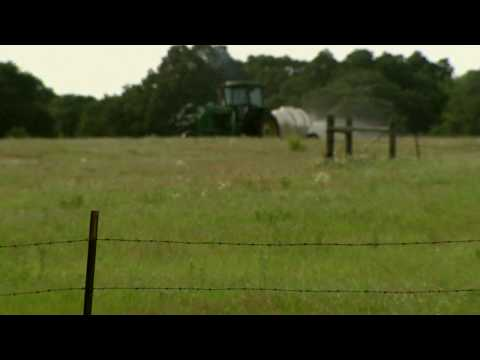 Spraying Pastures For Weeds