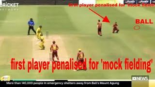 Queensland cricketer first to be penalised for 'fake fielding