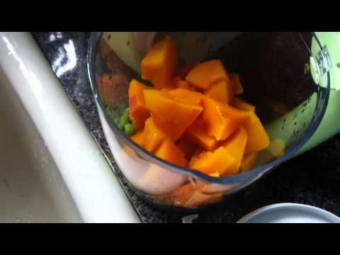 Freshfoods Cook-n-Blend food maker review
