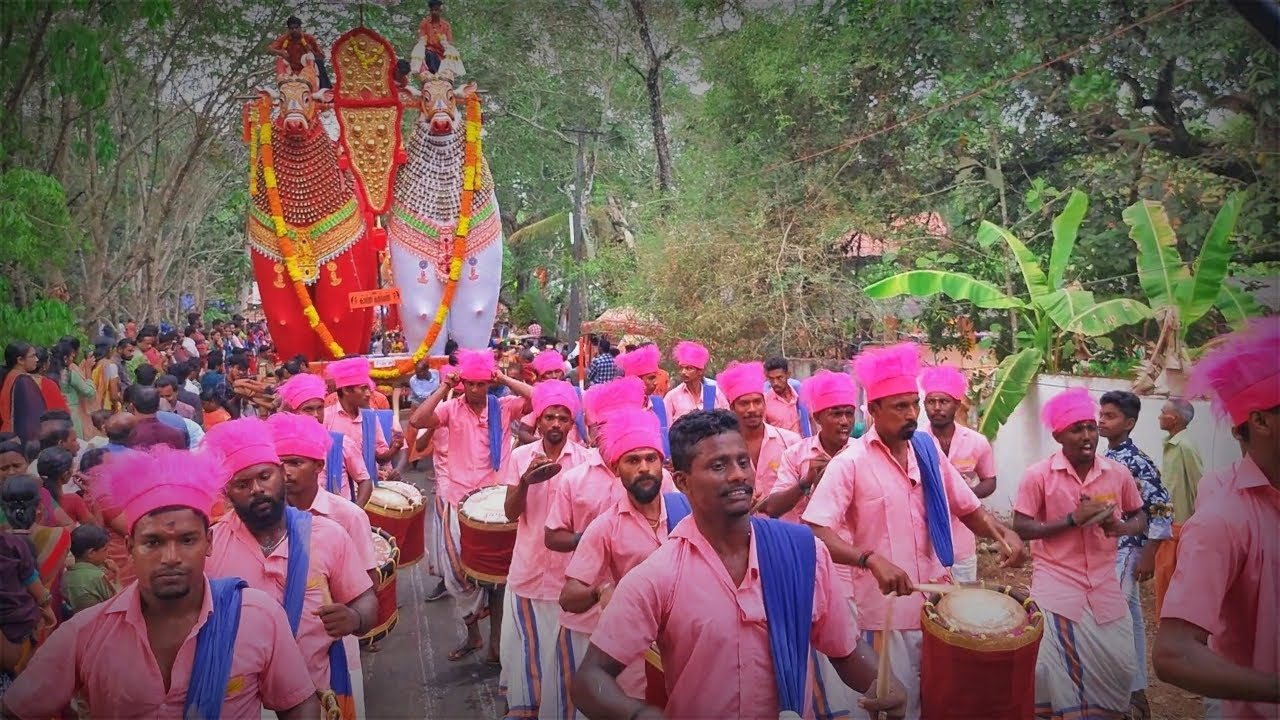 Entry of Starbrothers at Vedaraplavu Chettarikkal pooram