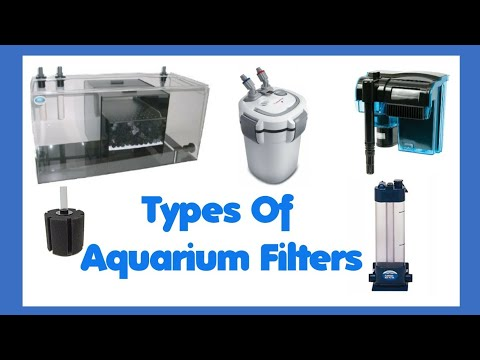 Types Of Aquarium Filters For Aquarium - YouTube
