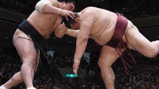 大相撲夏場所14日目の24日、白鵬は鶴竜を寄り切って1敗を守り、稀...