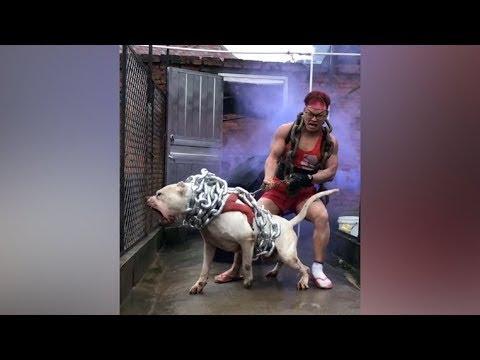 Adam Bu Köpeği Tutabileceğini Düşündü.. İstenmeyen Bir Şey Oldu