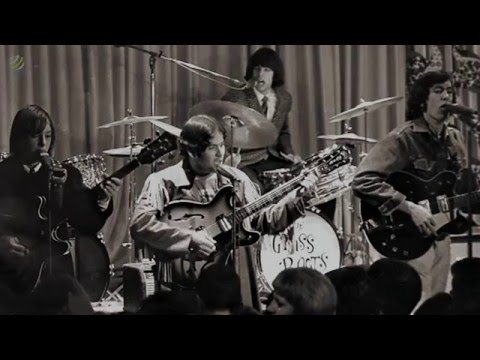 The Grass Roots - Wait A Million Years [HQ Audio]