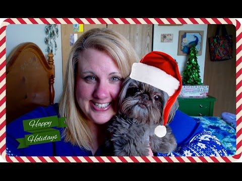 Getting Ready For The Holiday!  Vlog #62
