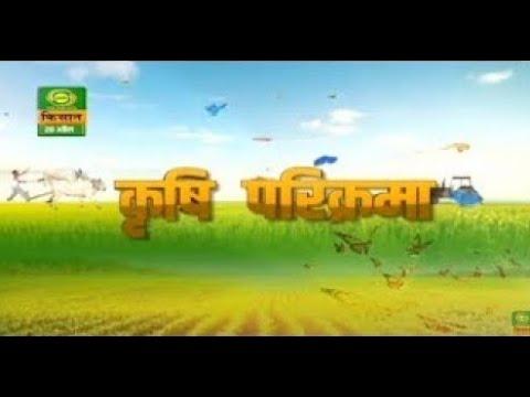 DD Kisan's special program 'Krishi Parikrama with expert Dr Rajeev Kumar & D