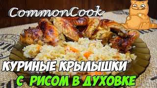 Крылышки с рисом в духовке. Вкусные запеченные куриные крылья