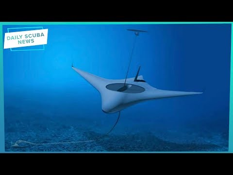The Manta Ray Project Is Under Way... But What Is It? | Daily Scuba News (w/ Shaun)