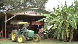 Frazier Farms Brooksville, Florida (Our Florida TV)