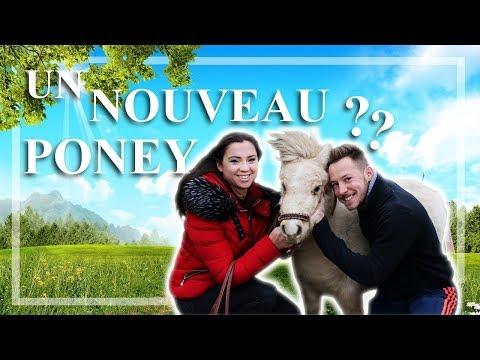 [ VLOG ] - Un nouveau poney ?
