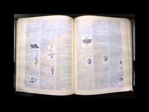Alterscience   Dictionnaire Français Audio