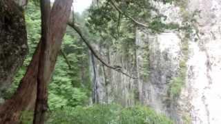 弥山川・岩の双門