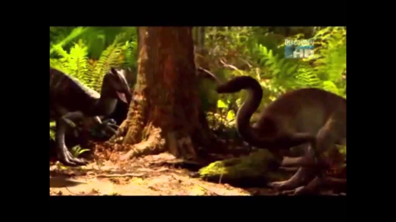 Cryolophosaurus vs Dilophosaurus - Who would win in a ... Utahraptor Dinosaur Revolution