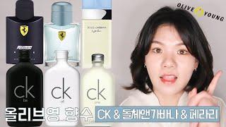 퍼퓸디렉터의 올리브영 향수 추천 - CK&돌체앤…