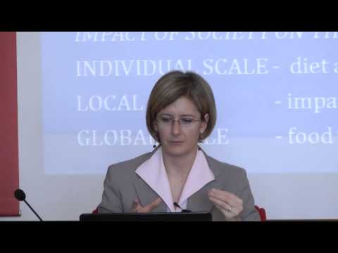 VIULectures 2013: Water and Globalization, S. Tamea, Polytechnic of Turin
