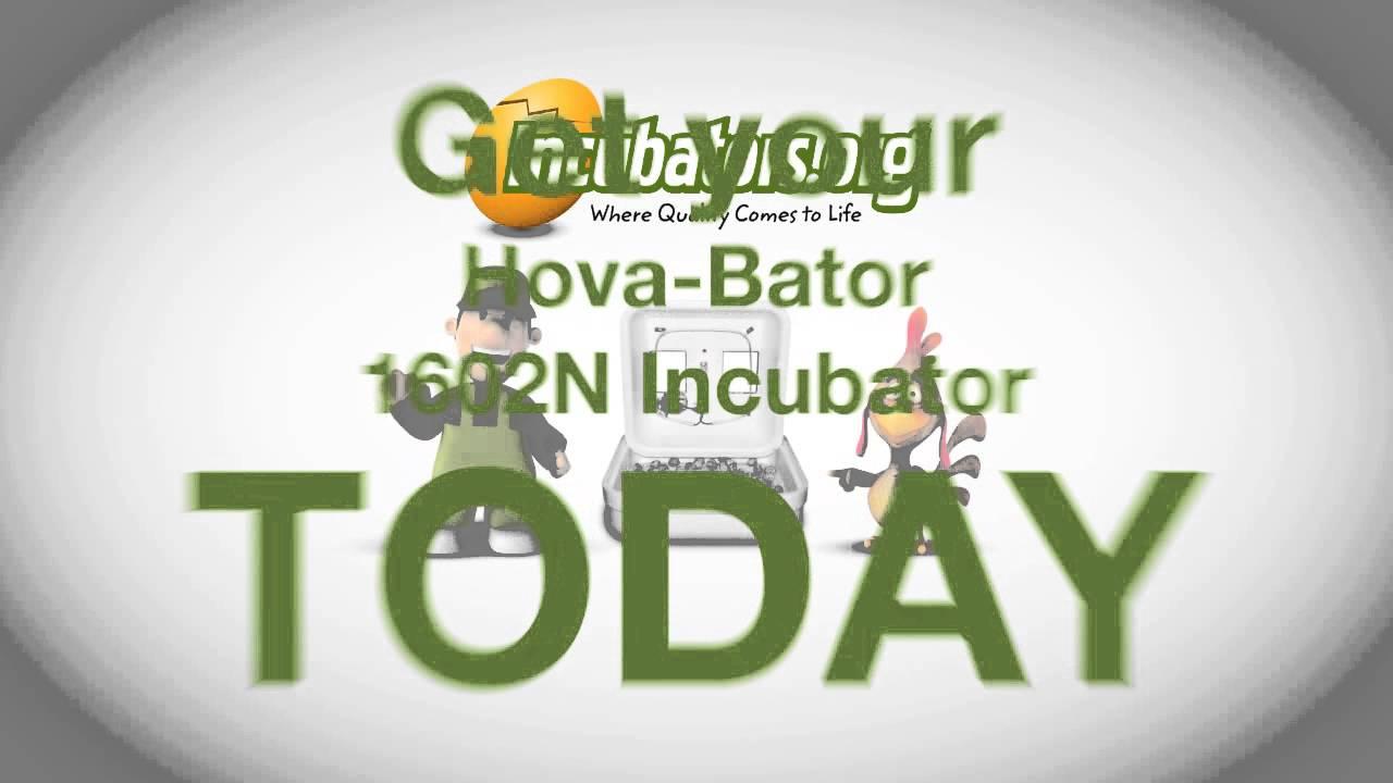 HovaBator 1602N Incubator
