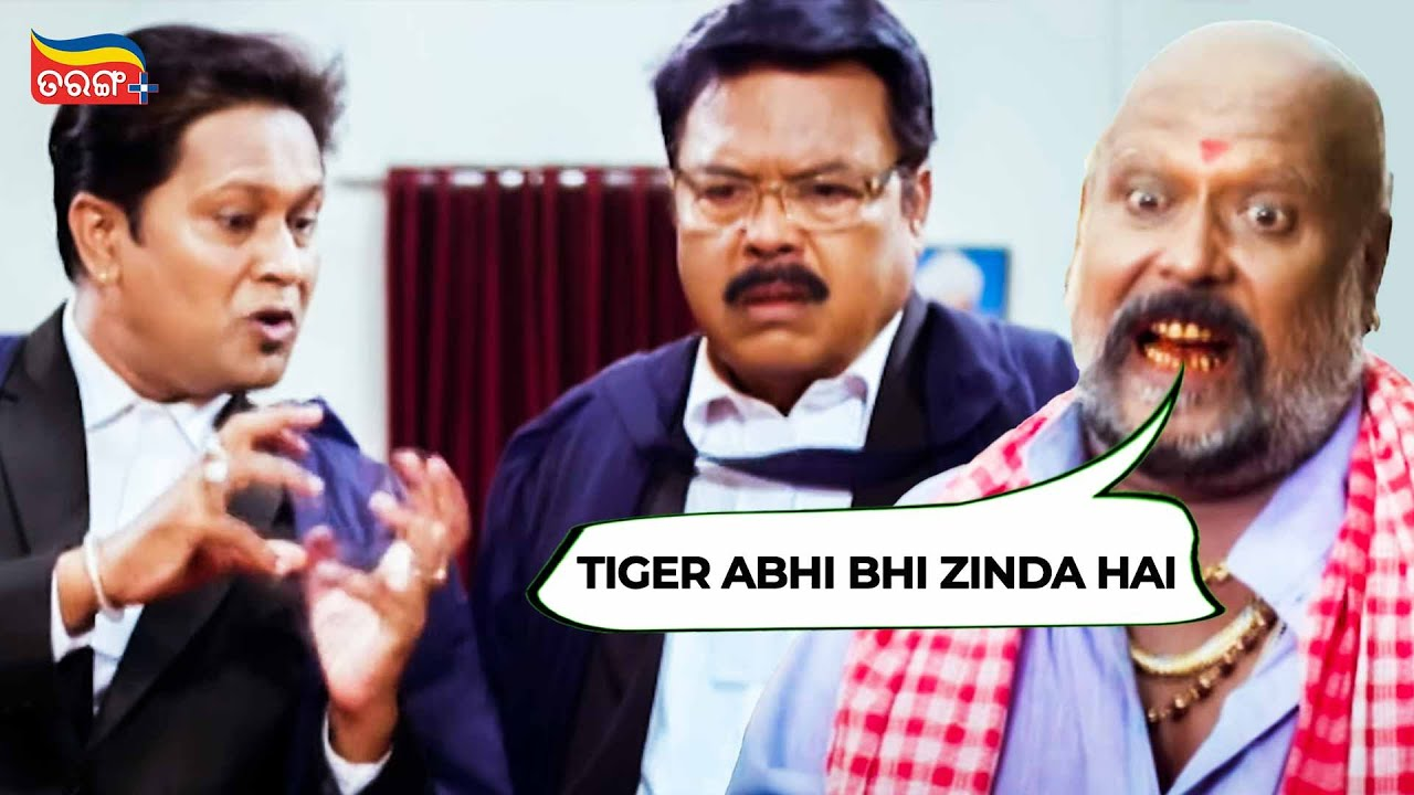 Download Tiger abhi bhi zinda hai | Courtroom Comedy Scene | Golmaal Love | Tarang Plus