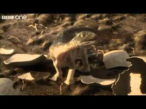 Argentinosaurus - Planet Dinosaur - Episode 5.