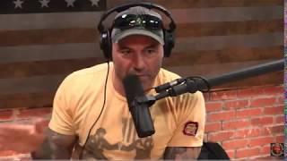 Joe Rogan Talks About Male Sexuality