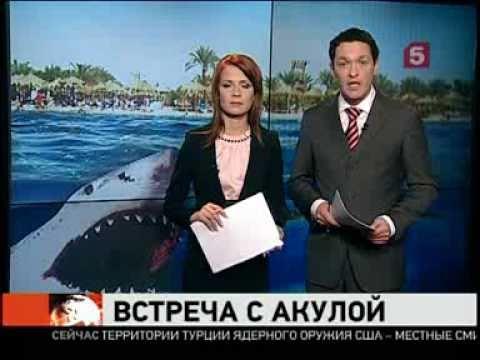 Новости египта