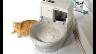 Туалет для кота;)