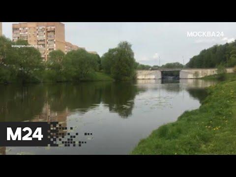 """""""Погода"""": теплая погода ожидается в столичном регионе - Москва 24"""