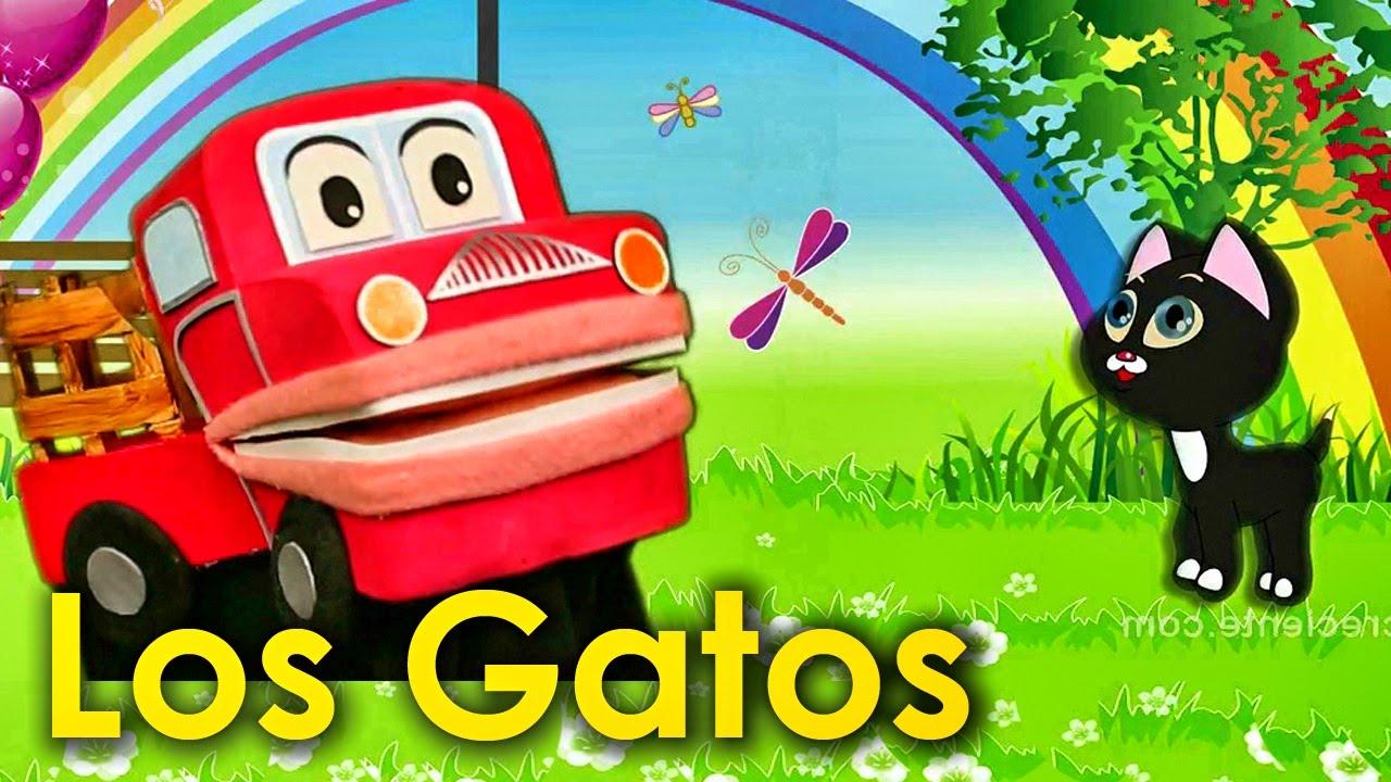 Tipos de razas de gatos - Los niños aprenden con Barney El Camión - Videos educativos