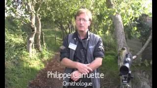 Le Parc du Marquenterre - Somme Tourisme