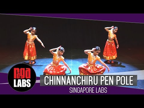 Chinnanchiru Pen Pole: Singapore Labs