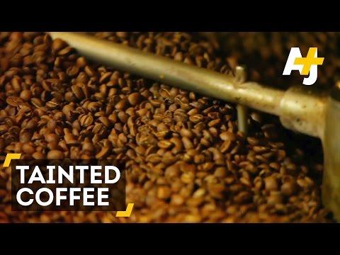 'SlaveryLike' Conditions At Brazilian Coffee Farms