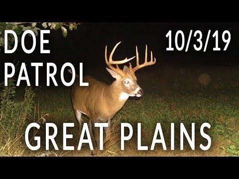 Great Plains   Doe Patrol