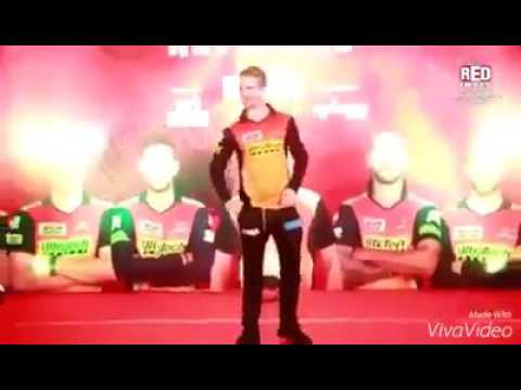 SRH players Funny moments while Dancing l IPL 2017