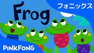 Frog | フォニックス読みF | ABCフォニックスの歌 | ピンクフォン英語童謡